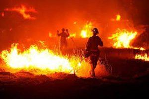 dinas pemadam kebakaran (Copy)