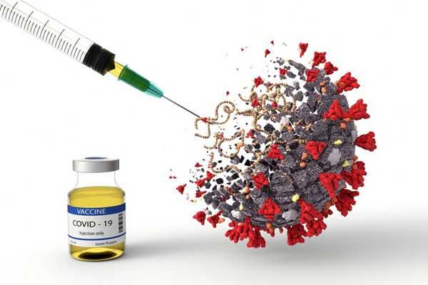 Jokowi Minta Vaksin Covid-19 Harus Lewati Uji Klinis yang Benar