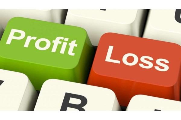 Dalam Investasi dan Bisnis, Untung atau Rugi itu Pasti