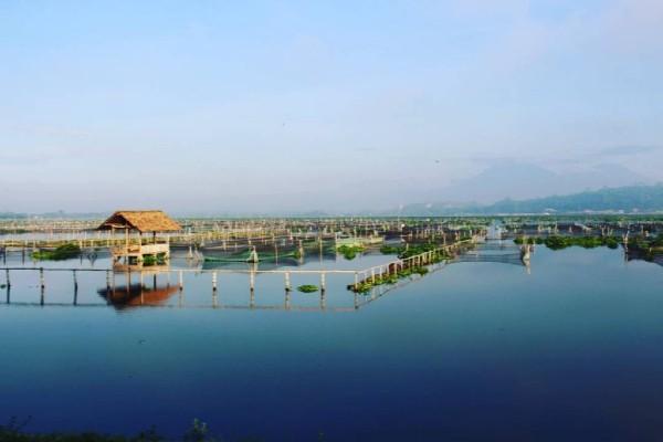 Proyek Rawa Jombor Diperluas, Klaten Bakal Punya Arena Kuliner dan Gowes