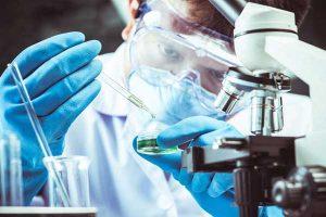 Corona Belum Usai, Virus Nipah Kini Dikhawatirkan Jadi Pandemi Baru di Asia