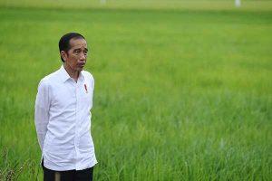 Jokowi Ingin Liga 1 2021 Segela Dimulai