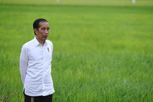 Jokowi Ingin Liga 1 2021 Segera Dimulai