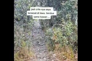 Viral, Kisah Pendaki Tersesat di Lawu Selamat Usai 'Dituntun' Burung Jalak